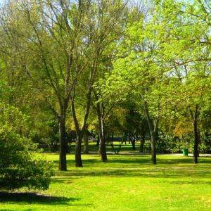 Nuevo Parque en Torrelodones
